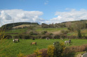 A view of the country setting for the kennels at Beeches Brook.